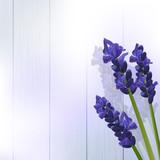 lavender flowers on wood