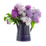 Fototapety Lilac in garden pot