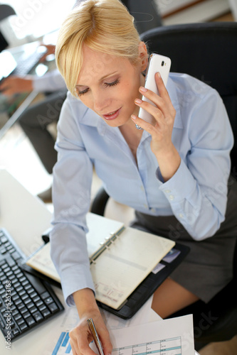 Businesswoman on the phone writing on agenda