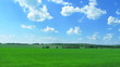 Beautiful green field with  sky and clouds. Time lapse