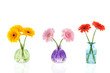 Glass vases with colorful Gerber flowers