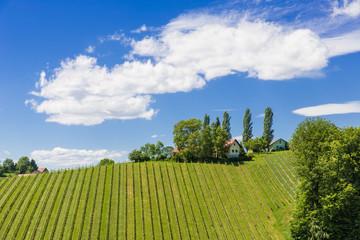 Winzerhaus mit Wolkenschleier, Südsteiermark, Österreich