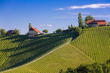 Winzerhaus, Südsteiermark, Österreich