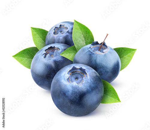 Fresh blueberries isolated on white - 52528192