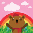 Brown bear with rainbow in the forest