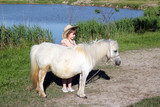 little girl and white pony horse