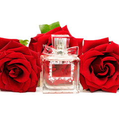 perfume and roses isolated on white background