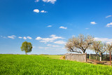 Countryside landscape during spring with spring and fence