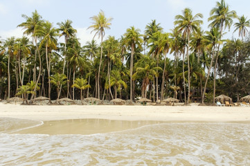 Beach with white sand and palmtrees