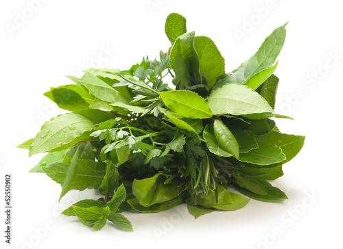 Aromatic herbs - Erbe aromatiche