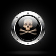 danger button. skull and crossbones icon