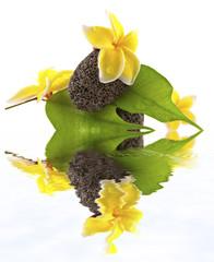 reflets de galets zen fleuris