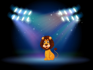 A friendly lion at the center of the stage