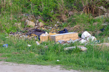 Garbage near the road in forest