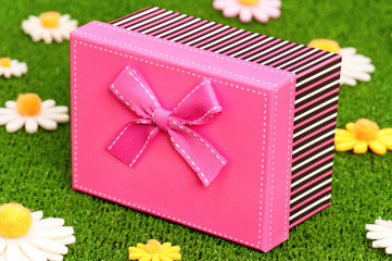 Gift box on grass