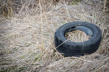Old tire on dry grass