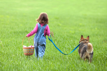 Little girl with dog walking on the field