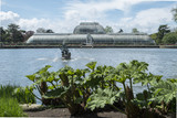 Royal Botanic Garden, 3