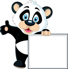 cute Baby panda holding blank sign