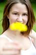 Mädchen überreicht Butterblume