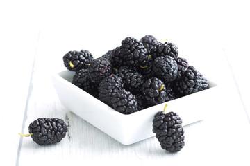 Mulberry - Morus celsa - Gelsi