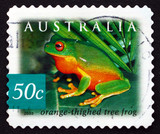 Postage stamp Australia 2003 Orange-thighed Tree Frog, Amphibian poster