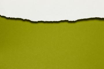 Papierfransen, horizontal oben, weiss, ockergrün