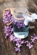Common lilac, perfume