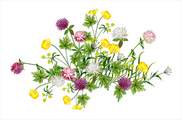 Beautiful composition of wild flowers