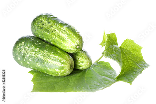Cucumbers on white background with green leaf