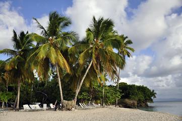 Playa Bacardí 2