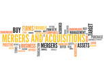 Mergers and Acquisitions (takeover, fusion, merger, acquisition) poster
