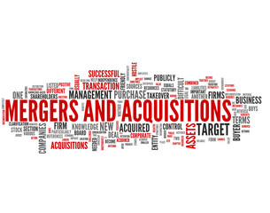 Mergers and Acquisitions (takeover, fusion, merger, acquisition)