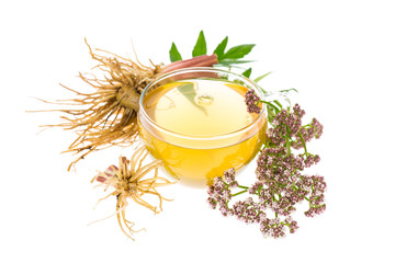 Baldrian (Valeriana officinalis) Tee mit Wurzeln, Blätter und B