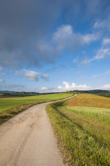strada sterrata in campagna toscana,Toscana,Italia
