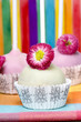Colorful cake pops, birthday party. Daisy flower decor.