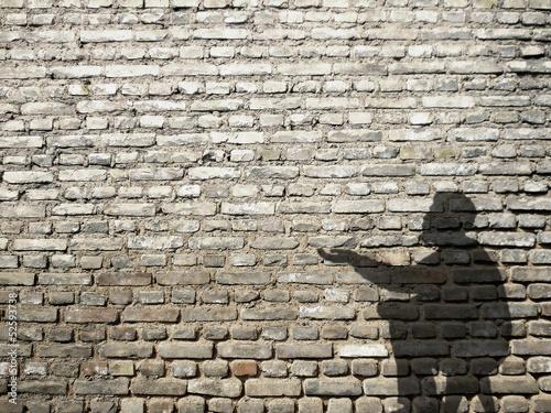 fototapeta na ścianę ombre de mendiant