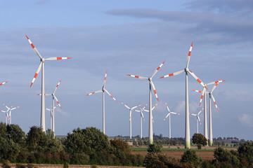 Ein Feld mit Windraedern..