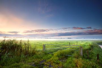 fense on Dutch farmland in misty morning