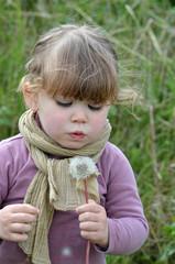 souffler sur une fleur