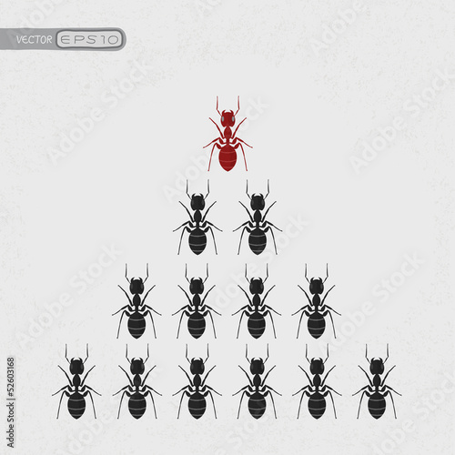 Ant leader , eps10 vector format