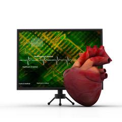 Human heart with ECG heart beat monitor.