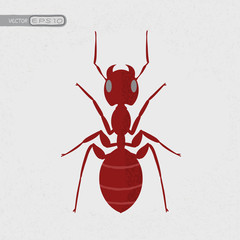 Red ant , eps10 vector format
