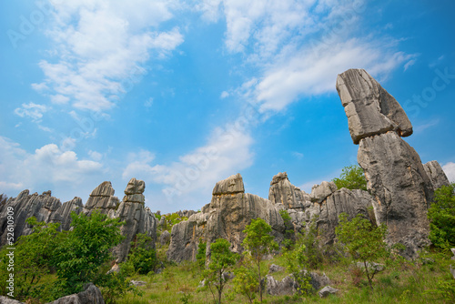 Natural landscape of China (Stone Forest)