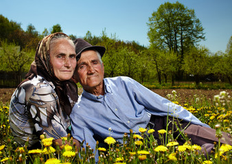 Old couple sitting in a dandelion field