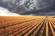 A huge storm cloud - 52613742