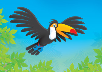 Toucan flying over trees in a tropical forest