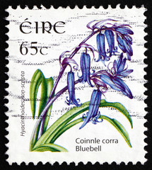 Postage stamp Ireland 2004 Bluebell, Bulbous Perennial Plant
