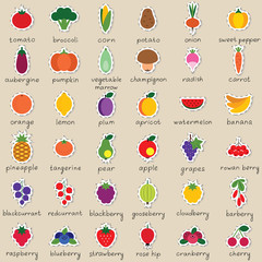 Set of vector fruit and vegetable stickers