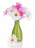 Beautiful daisies in colorful vase isolated on white